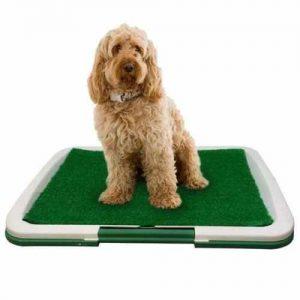 bandeja sanitaria para perros grandes y pequeños