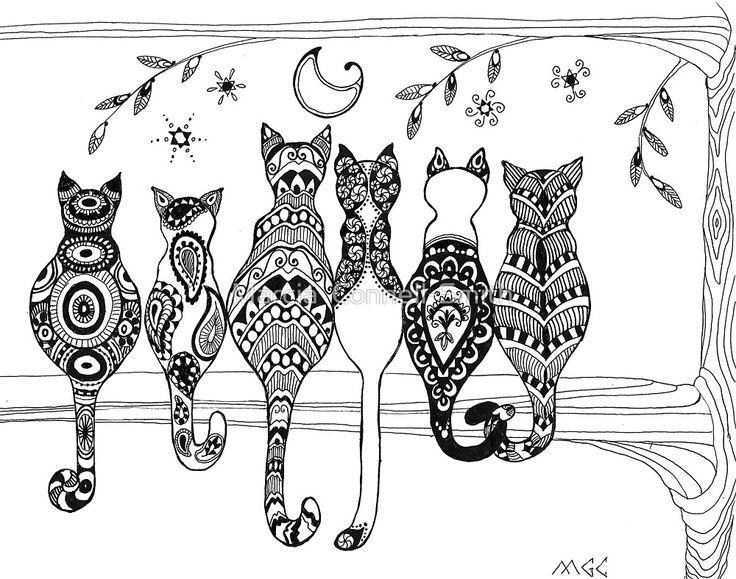 Los Gatos Todo Lo Que Debes Saber Guía 2018 Losanimalesorg