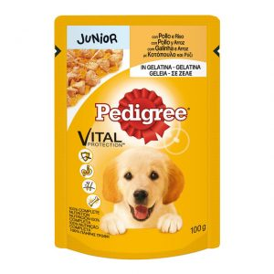 comida humeda para perros