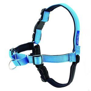 premier arnés easy walk anti tirones para perro
