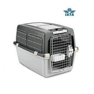 transportin para perros homologados por iata