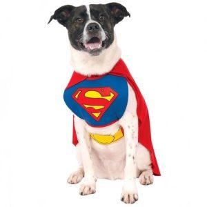venta de disfraces para perros