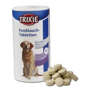 Vitamina b para perros